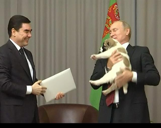 Dog_lover_Putin_gets_puppy_as_Bday_gift_2017_10_12_07_46_59