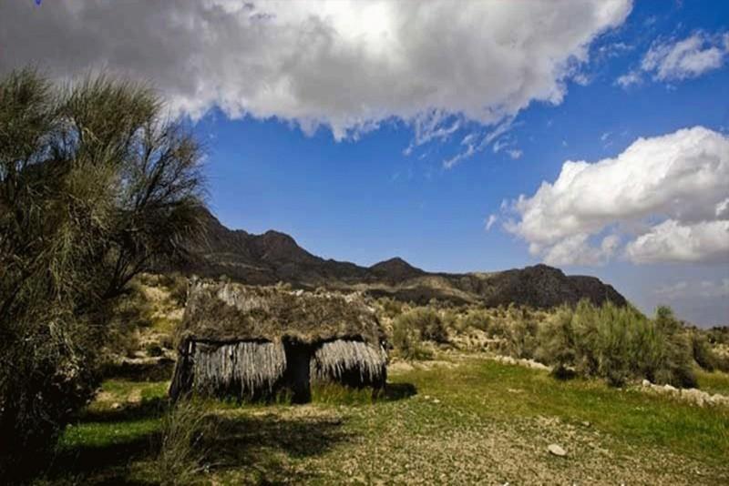 منطقه حفاظت شده گنو