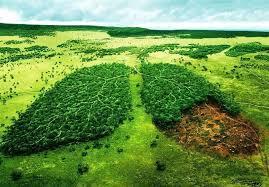 بقا زمین در گروه دستها و اندیشههای سالم  اردبیل پیشرو در مدارا با طبیعت