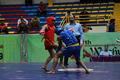 سانداکاران راه یافته به نیمه نهایی ووشو جام پارس مشخص شدند