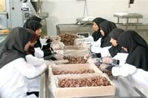 زمینه اشتغال فارغالتحصیلان بیکار در استان مازندران فراهم شود