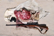 شکارچی غیرمجاز در طبس دستگیر شد