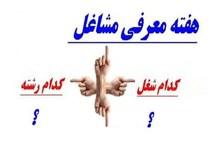 حمایت از کالای ایرانی محور برنامه های هفته معرفی مشاغل است