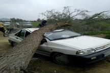بارش باران و تندباد در اهواز31 حادثه در پی داشت