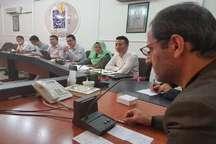 سرمایه گذاری400 میلیون دلاری چین برای تولید 500 هزارخودرو درساوجبلاغ