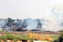 گسترش آتش سوزی در تالاب هور العظیم آمادگی ایران برای اعزام بالگرد به کشور عراق