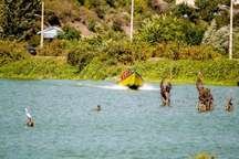 قایق زوج جهانگرد در آستارا ، به تور ماهیگیری افتاد