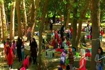 شاهکارهای خلقت در جاذبه های گردشگری کهگیلویه و بوراحمد