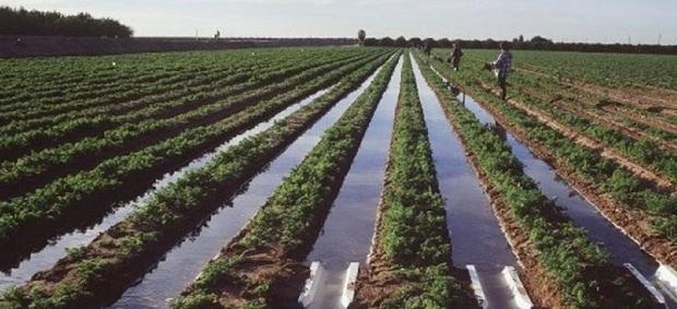 حجتی نحوه تامین آب کشاورزی خراسان شمالی را بررسی می کند