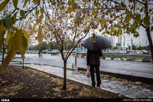 افزایش 58.4 درصدی میزان بارندگیها در آذربایجان شرقی نسبت به سال گذشته