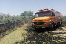 یک هکتار از پارک ملی کرخه به آتش کشیده شد