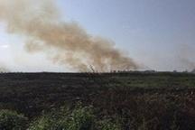 مراتع طالقان و جاده چالوس در معرض بیشترین تهدید آتشسوزی