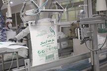 تولید شکر در کشتوصنعت فارابی خوزستان شروع شد