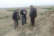 محوطه تاریخی داورزن توسط باستانشناسان بررسی شد