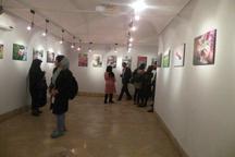 پایان کار نمایشگاه عکس مدرسه طبیعت در استان یزد