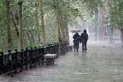 سامانه بارشی وارد لرستان می شود