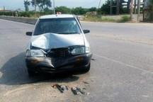 تصادف رانندگی در جاده شهرضا - اصفهان هفت مصدوم داشت