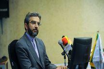 عضو اسبق تیم مذاکره کننده هسته ای: انتخابمان باید ضامن پیشرفت ایران باشد