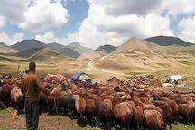 بازگشت عشایر سهند به مناطق قشلاقی