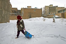 برف تعدادی از مدارس خراسان جنوبی را تعطیل کرد
