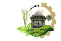 تلاش دولت یازدهم برای متوازن کردن توسعه روستاها در تمام بخش ها