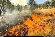 آتش سوزی ارتفاعات صعب العبور