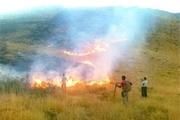امسال ۴۰۰ هکتار از مراتع و جنگلهای البرز دچار حریق شده است