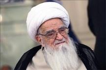 """فعالیتهای جامعه المصطفی برای اسلام و تشیع بسیار چشمگیر بوده  مقابله با وهابیت """"جهاد"""" است"""
