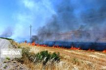 آتش سوزی ۲۰ هکتاری زمین های کشاورزی «ناغان » مهار شد