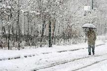 برف و سرما آسمان کردستان را فرا می گیرد