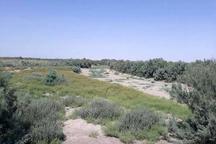 50 درصد زمین های ملی زنجان در مناطق بحرانی است