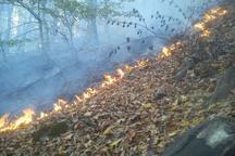 آتش سوزی در جنگل های گلوگاه