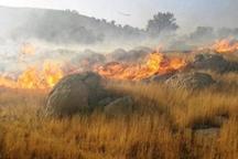اعزام یک بالگرد و ۳ تیم عملیاتی برای مهار آتش جنگل های اندیمشک