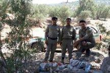 صیادان متخلف در پلدختر دستگیر شدند