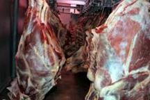 توزیع گوشت گرم وارداتی در خوزستان   هر کیلو 350 هزار ریال