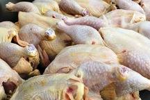 توزیع 4 تن گوشت مرغ در مهاباد آغاز شد