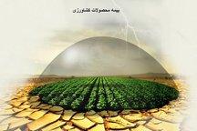 بیش از 15 درصد اراضی زراعی و باغی خسارت دیده آذربایجان غربی تحت پوشش بیمه هستند