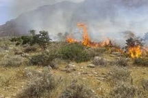 25 هکتار ازمراتع روستای پتک جلالی باغملک در آتش سوخت