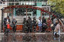 رگبار پراکنده باران در گیلان طی فردا
