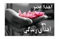 اهدای اعضای دختری که پیش از رسیدن به مقصد زائر امام رضا(ع) شد