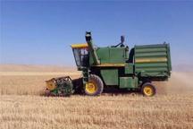 خرید گندم در ایرانشهر از مرز 16 هزار تن گذشت