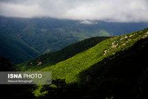 چه میزان از جنگلهای هیرکانی در استان سمنان واقع شدند؟  ثبت جهانی محدود به جنگل ابر نیست
