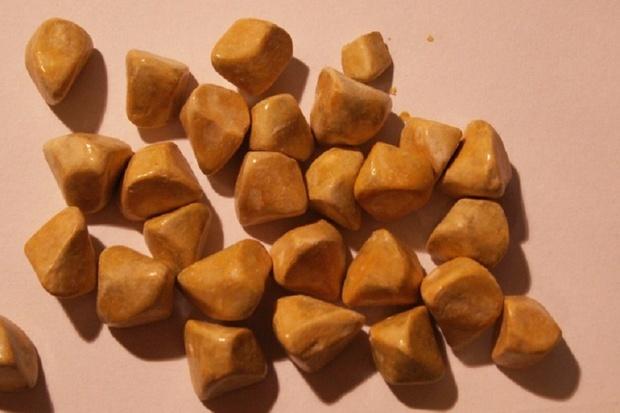کاهش مصرف چربی از ابتلا به سنگ کیسه صفرا پیشگیری می کند