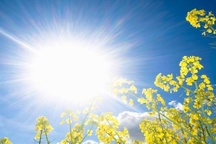 امیدیه با 46.2 درجه گرمترین نقطه خوزستان اعلام شد