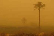 مدیرکل محیط زیست خوزستان: مقابله با ریزگردها منوط به مدیریت آب و سرزمین است