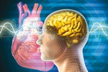 بیماریهای قلبی و مغزی بیشترین علت مرگ و میر در قم است