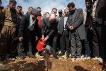 آیین های هفته منابع طبیعی و روز درختکاری در کردستان آغاز شد