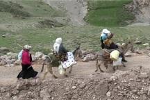 دولت از عشایر حمایت می کند