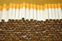 کشف ۳۷۰ هزار نخ سیگار قاچاق در شهرستان بوکان