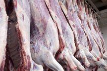 508 تن گوشت قرمز در قزوین توزیع شد